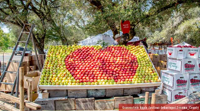 Sonoma County Apples