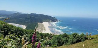 Cascade Head in Oregon