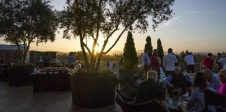 Napa Sunset party