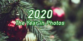 2020 Year in Photos