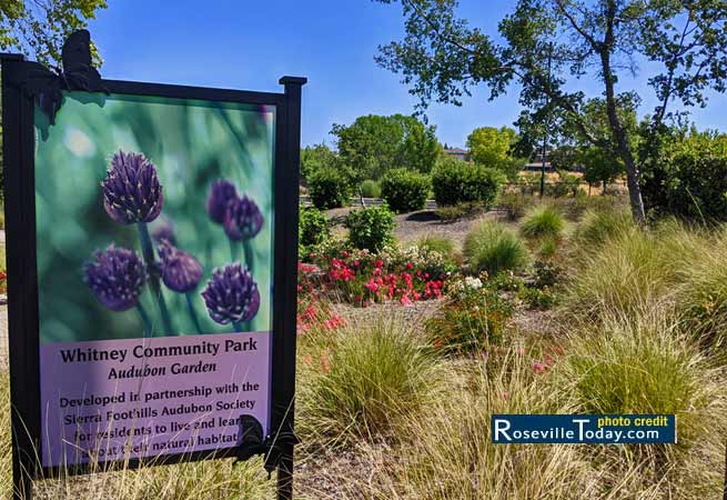 Whitney Community Park located in Rocklin, CA